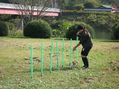f:id:yasukazu01:20091108232157j:image
