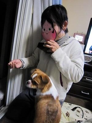f:id:yasukazu01:20100213214241j:image