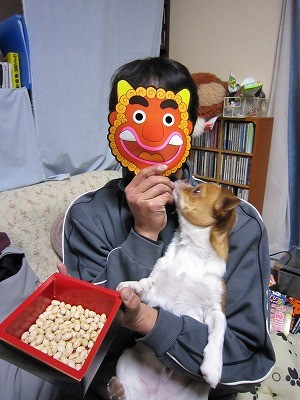 f:id:yasukazu01:20100213214246j:image