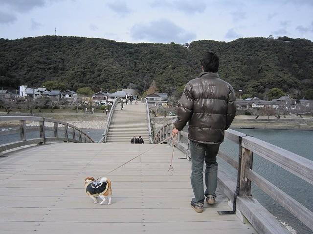 f:id:yasukazu01:20100220230813j:image