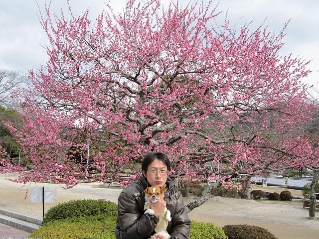 f:id:yasukazu01:20100220230816j:image