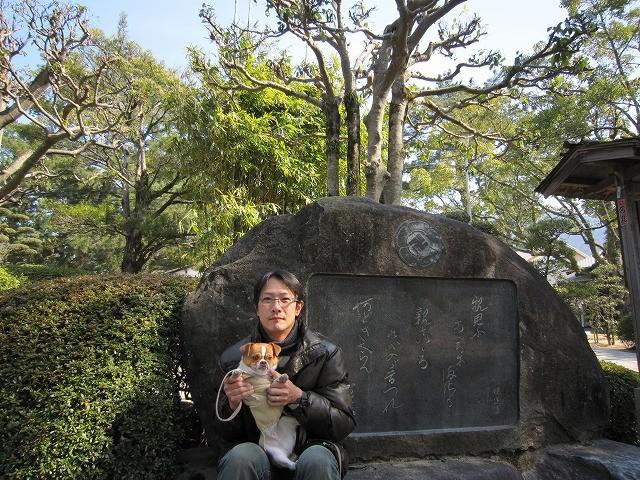 f:id:yasukazu01:20100222215639j:image