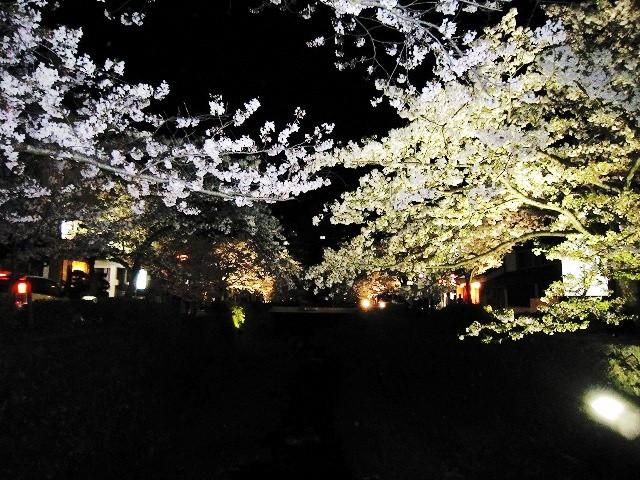 f:id:yasukazu01:20100406222650j:image