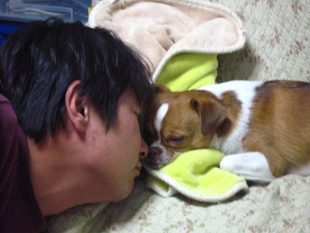 f:id:yasukazu01:20100410213955j:image