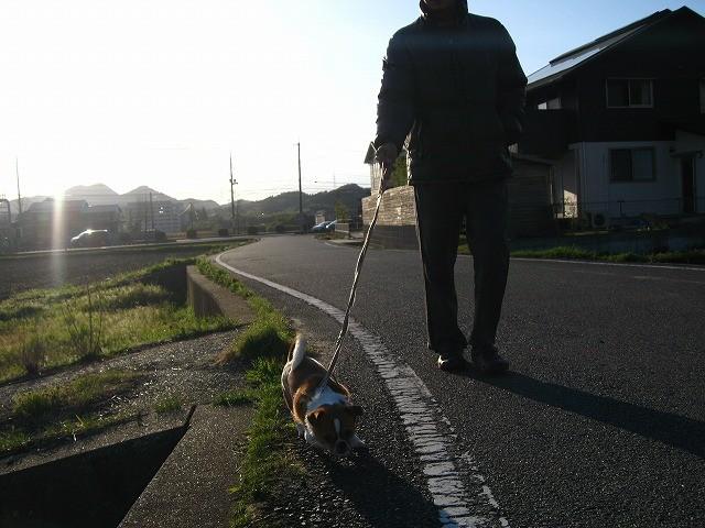 f:id:yasukazu01:20100416215323j:image