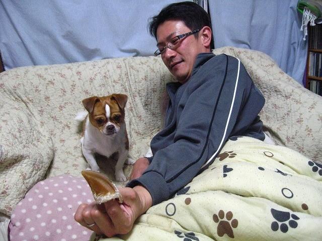 f:id:yasukazu01:20100426230354j:image