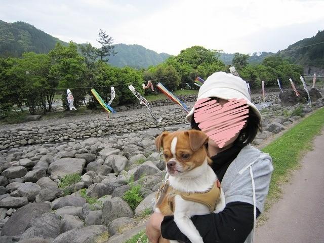 f:id:yasukazu01:20100509225749j:image