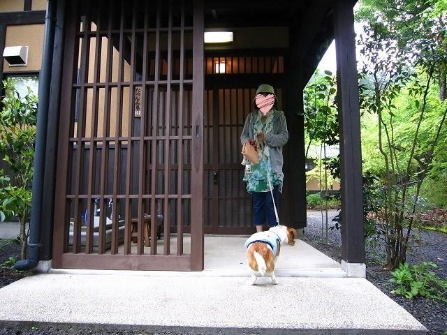 f:id:yasukazu01:20100511162612j:image