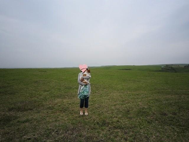 f:id:yasukazu01:20100511170140j:image