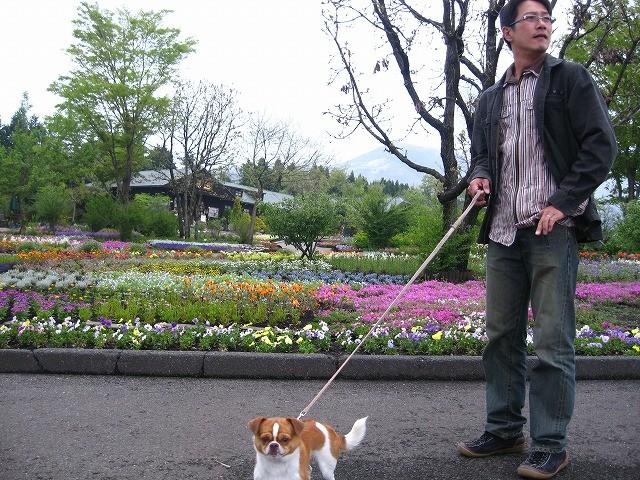 f:id:yasukazu01:20100513220519j:image