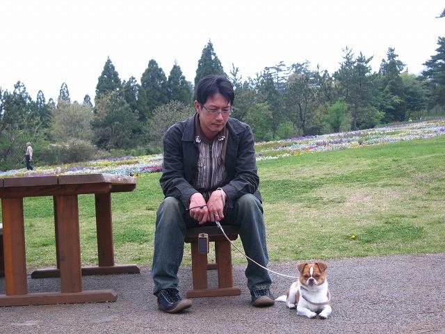 f:id:yasukazu01:20100514204642j:image
