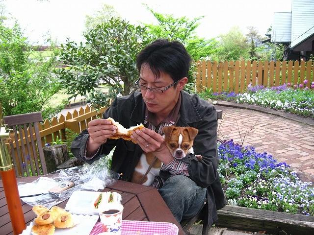 f:id:yasukazu01:20100514205742j:image