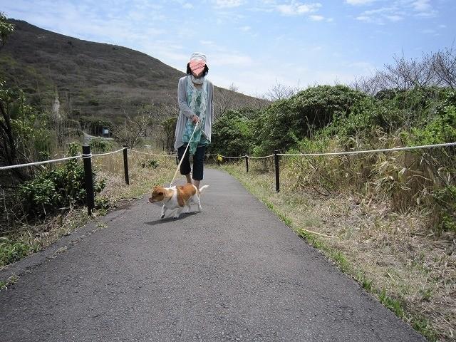 f:id:yasukazu01:20100515212321j:image