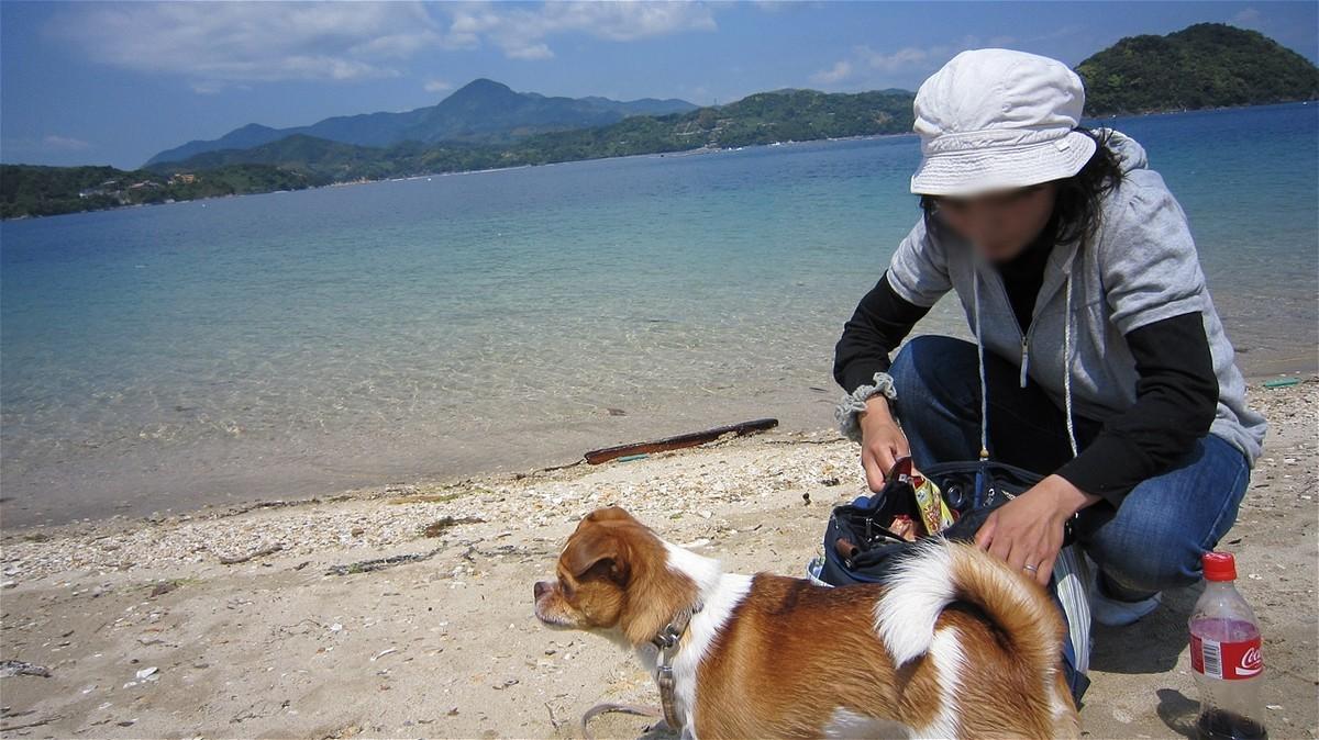 f:id:yasukazu01:20100516102802j:plain