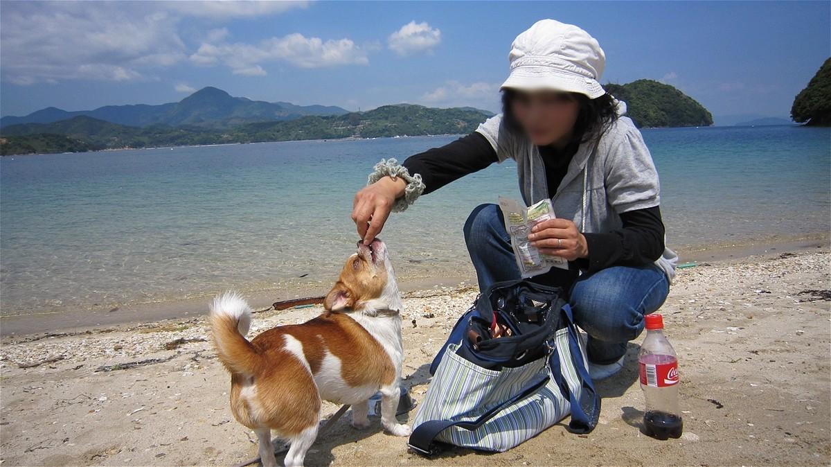 f:id:yasukazu01:20100516102830j:plain