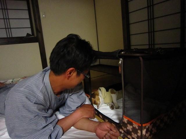 f:id:yasukazu01:20100519204724j:image