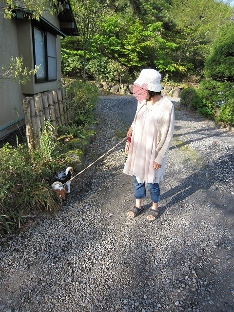 f:id:yasukazu01:20100520201214j:image