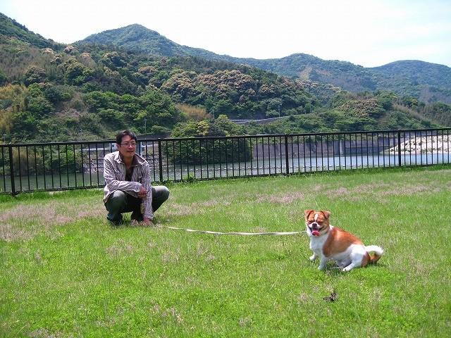f:id:yasukazu01:20100527212203j:image