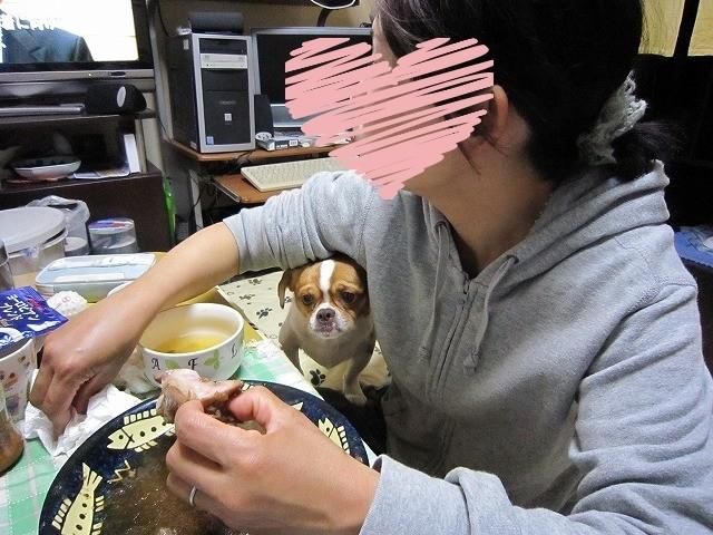 f:id:yasukazu01:20100529214407j:image