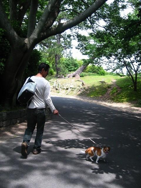 f:id:yasukazu01:20100601215943j:image