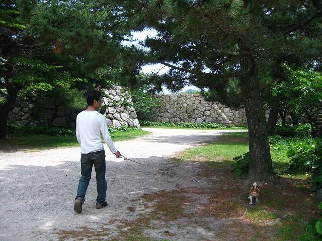 f:id:yasukazu01:20100601223412j:image