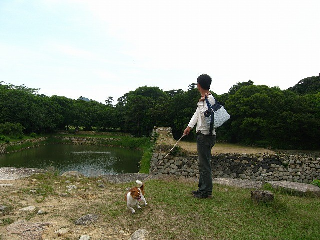 f:id:yasukazu01:20100601224115j:image