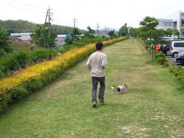 f:id:yasukazu01:20100606203921j:image