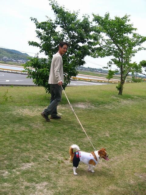 f:id:yasukazu01:20100606204413j:image