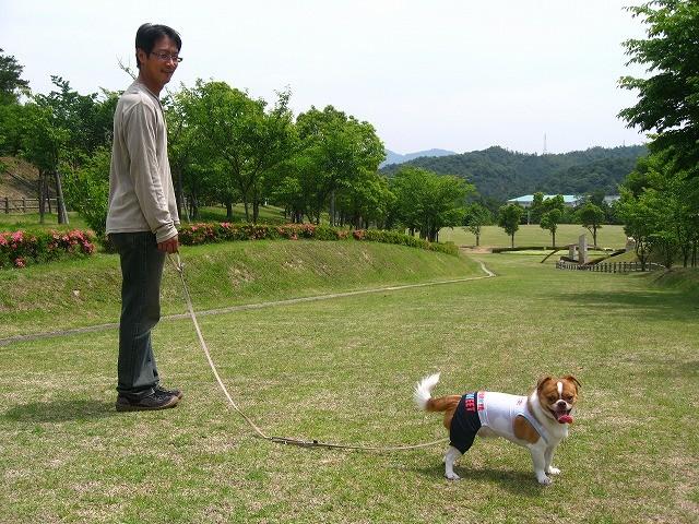 f:id:yasukazu01:20100606204750j:image