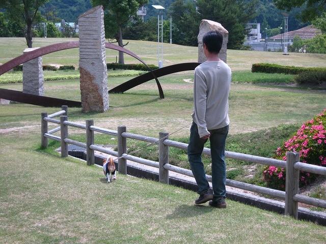 f:id:yasukazu01:20100607202821j:image