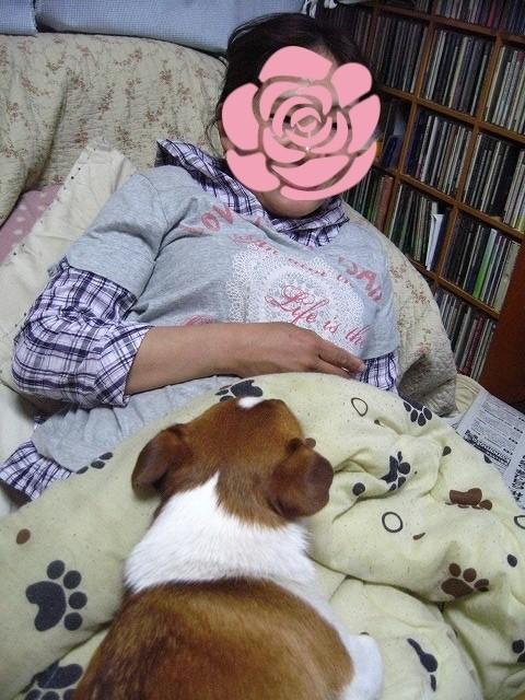 f:id:yasukazu01:20100609220023j:image