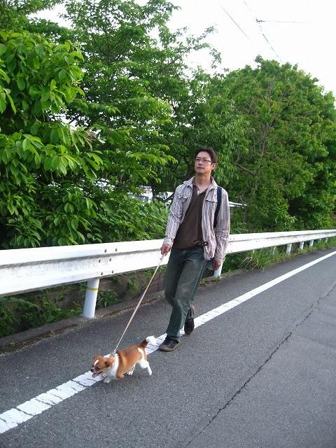 f:id:yasukazu01:20100610221342j:image