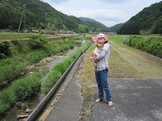 f:id:yasukazu01:20100614212054j:image