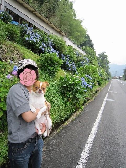 f:id:yasukazu01:20100621202711j:image