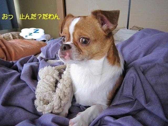 f:id:yasukazu01:20100626204001j:image