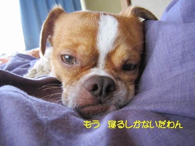 f:id:yasukazu01:20100626204003j:image