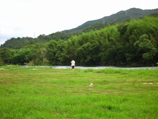 f:id:yasukazu01:20100810184004j:image