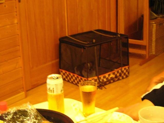 f:id:yasukazu01:20100817223008j:image