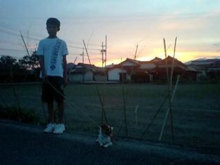 f:id:yasukazu01:20100818190738j:image
