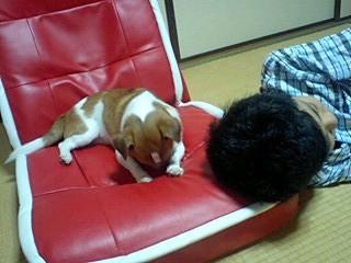 f:id:yasukazu01:20100905225657j:image