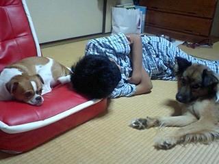 f:id:yasukazu01:20100905225751j:image