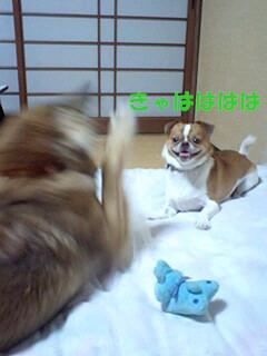 f:id:yasukazu01:20100906194137j:image