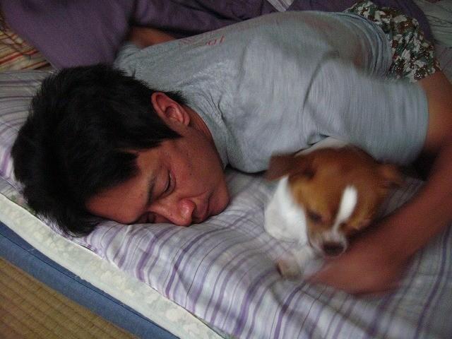 f:id:yasukazu01:20100919231029j:image