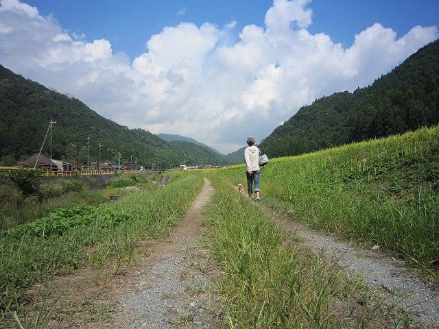 f:id:yasukazu01:20100920203928j:image