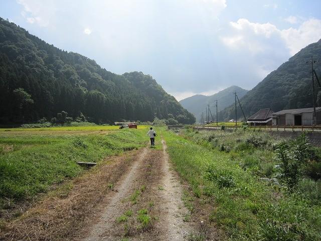 f:id:yasukazu01:20100921215804j:image