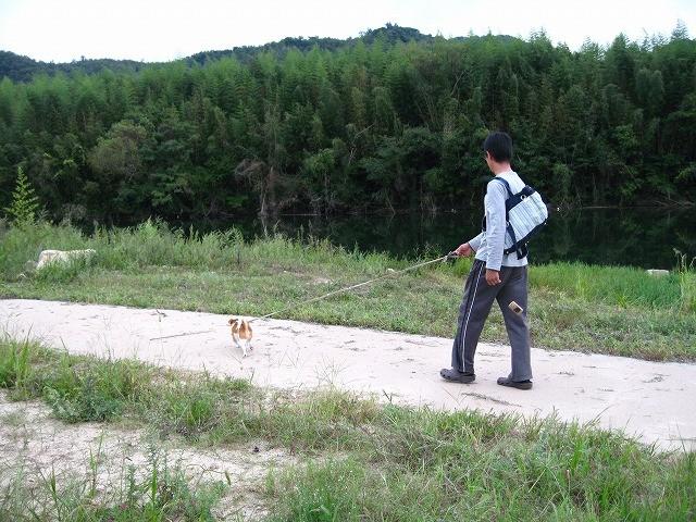 f:id:yasukazu01:20100929215144j:image
