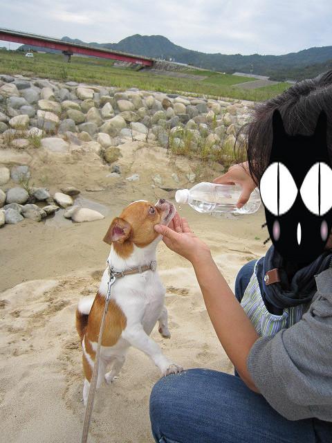 f:id:yasukazu01:20100929220712j:image