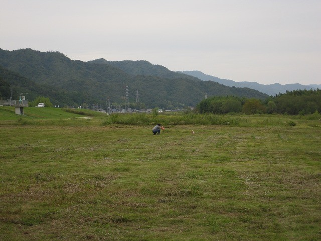 f:id:yasukazu01:20100930201831j:image