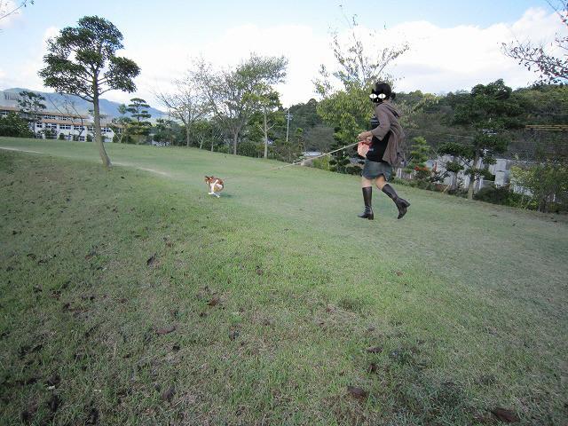 f:id:yasukazu01:20101011214903j:image