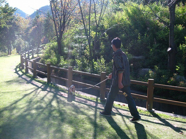 f:id:yasukazu01:20101012214325j:image